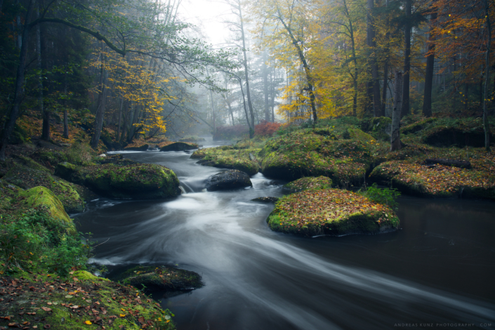 Autumn with stream in Germany