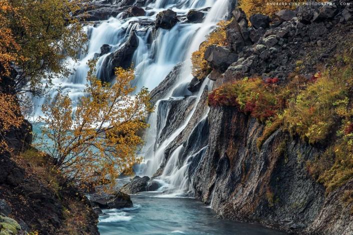 hraunfossar-autumn-detail-with-bush