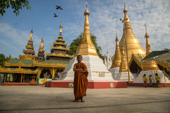 little-novice-monk-in-shwedagon-pagoda-yangon