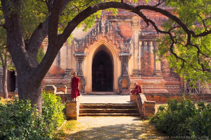 Myanmar novice monks under tree