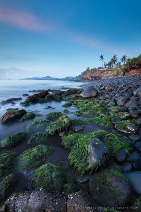seascape-bali-coast-with-green-algs